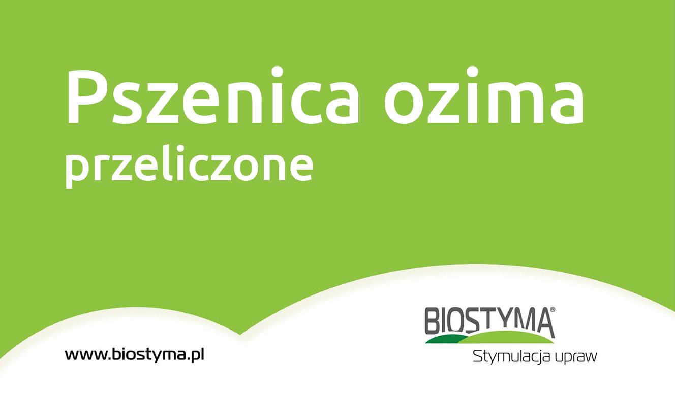 pszenica_1