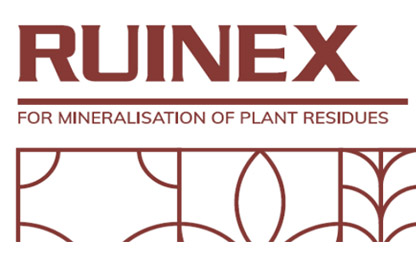 ruinex